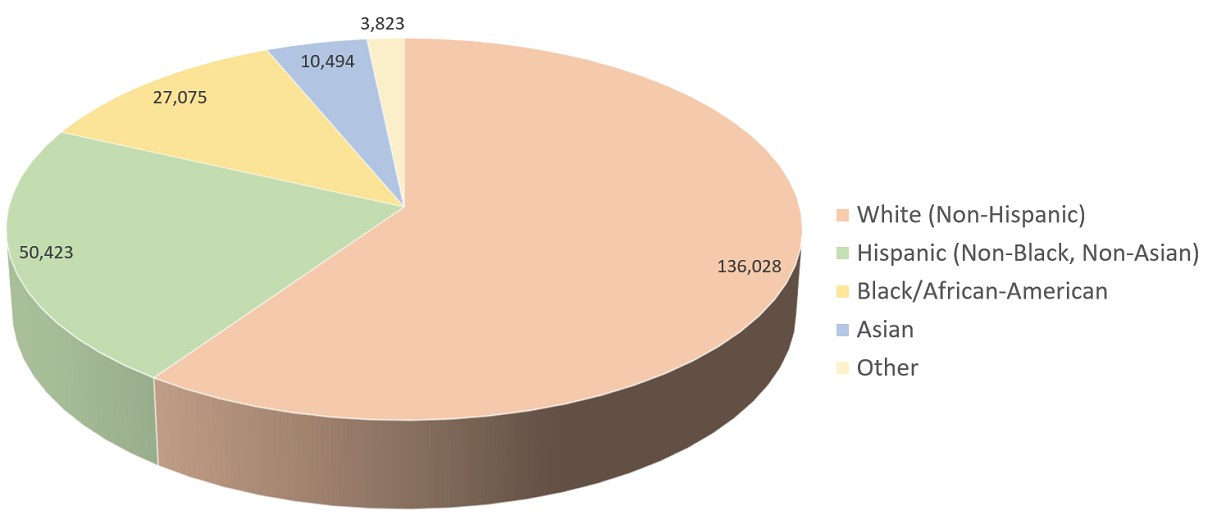Pie chart of the population of the College Station/Bryan, TX Metro Area, categorized by race/ethnicity for 2012.